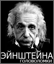 Einsteins Brain Game