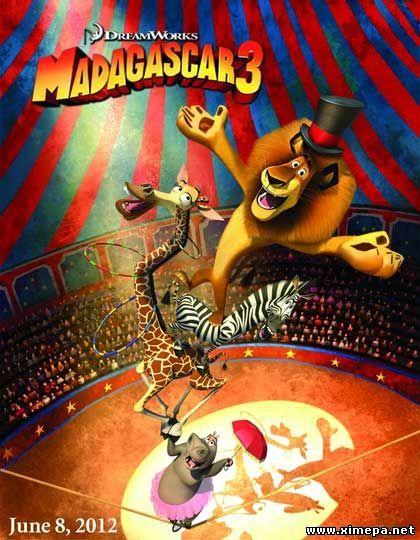 Скачать мультфильм Мадагаскар 3 бесплатно торрент