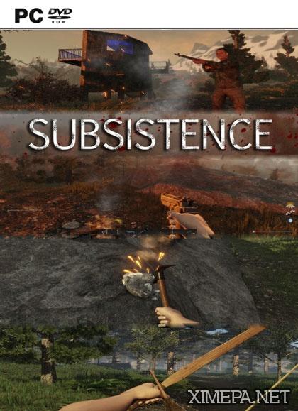 постер игры Subsistence