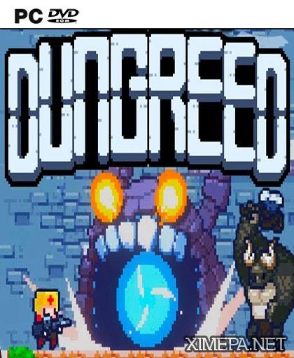 постер игры Dungreed