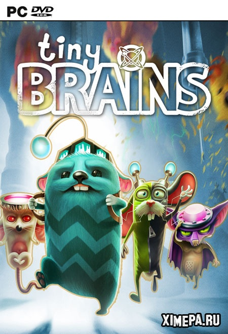 постер игры Tiny Brains