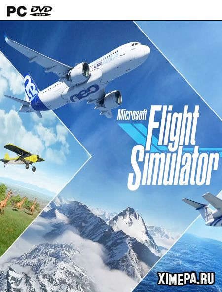 постер игры Microsoft Flight Simulator